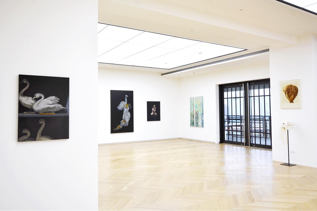 Tso Gallery